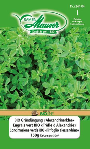 Engrais vert BIO Trèfle d'Alexandrie