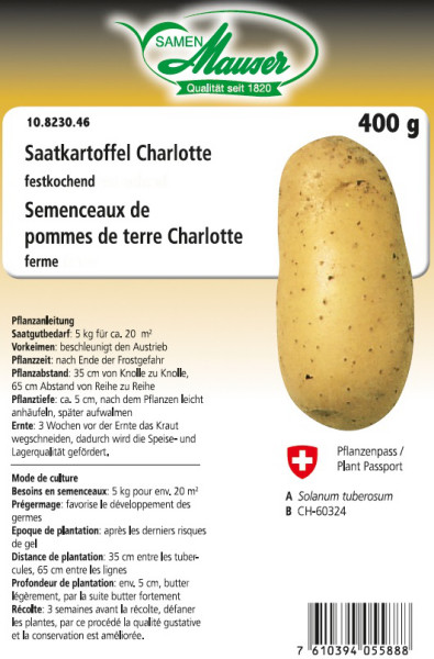 Saatkartoffel 'Charlotte' 400 g