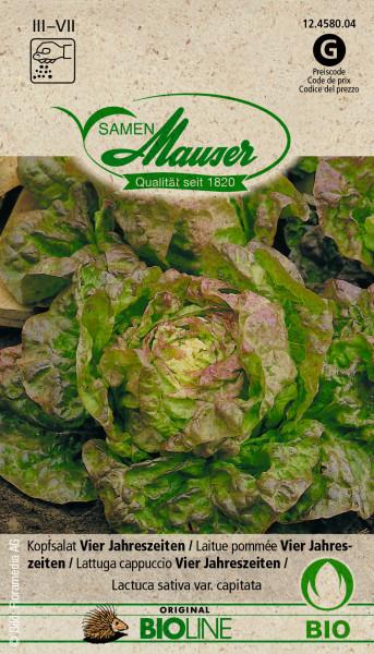 Knospe Bio Kopfsalat Vier Jahreszeiten