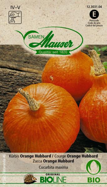Knospe Bio Kürbis Orange Hubbard