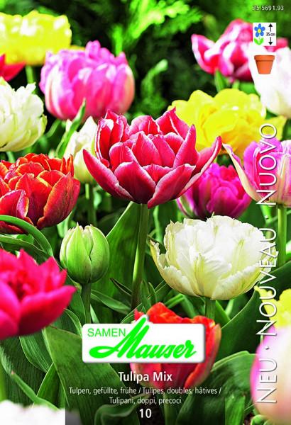 Mischung, Frühe, gefüllte Tulpe, 10 Zwiebeln