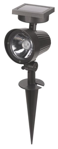 Ultra 365 Solar      Spotlight
