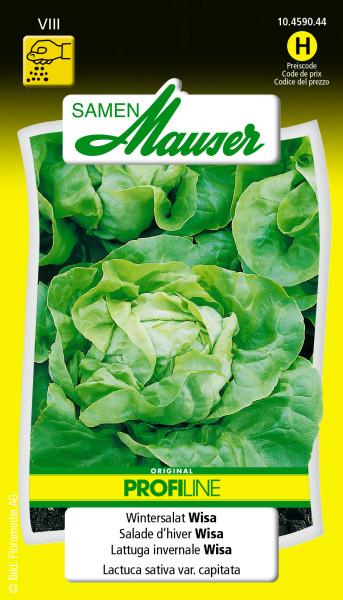 salade d hiver wisa profiline graines potag res salades samen mauser. Black Bedroom Furniture Sets. Home Design Ideas