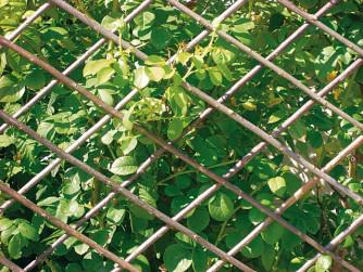 Ausziehbares Gitter