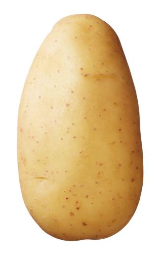 Semenceaux de pommes de terre Bio 'Erika' 1 kg