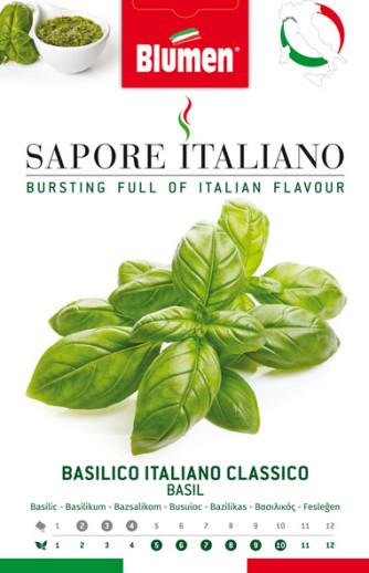 Basilikum Italiano Classico