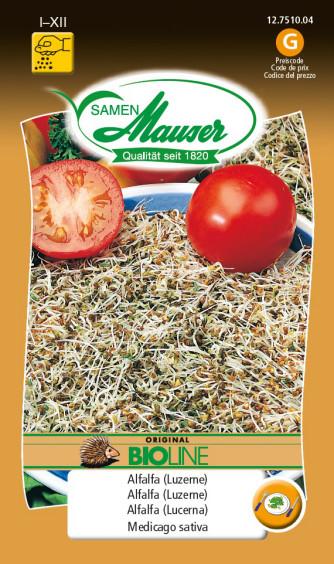 Germes de graines Alfalfa (lucerne) bio