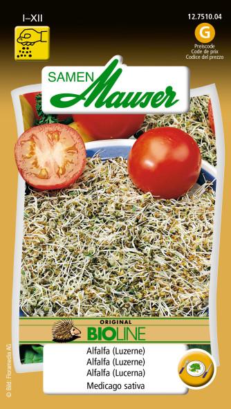 BIO-Speisekeimlinge Alfalfa (Luzerne)