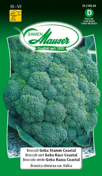 Broccoli Geba Stamm Coastal