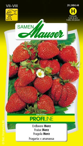 Erdbeere F1 Herz PROFILINE