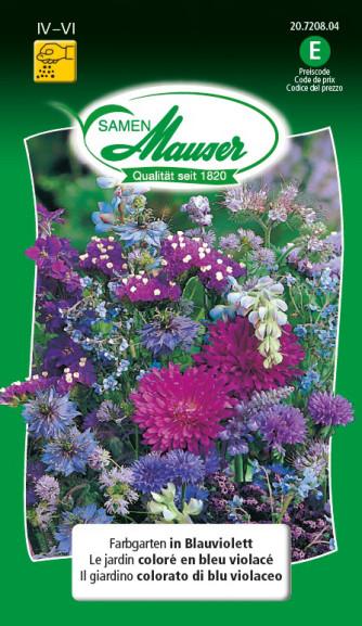 Farbgarten in Blauviolett