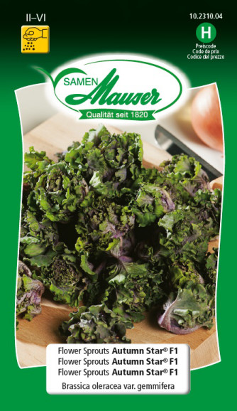 Flower Sprouts Autumn Star®