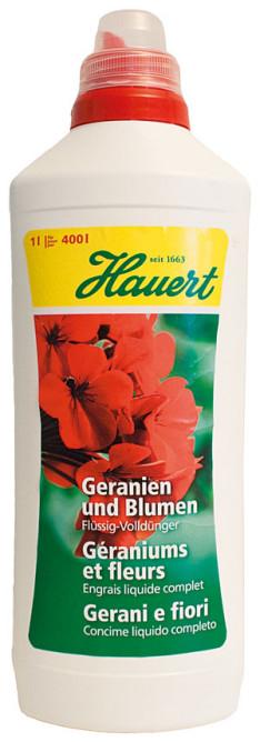 Hauert Geranien und Blumen