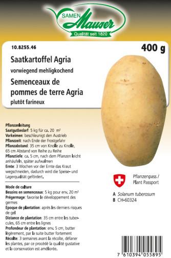 Semenceaux de pommes de terre 'Agria' 400 g