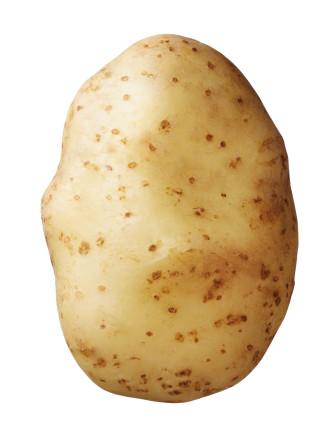 Saatkartoffel 'Bintje' 2,5 kg