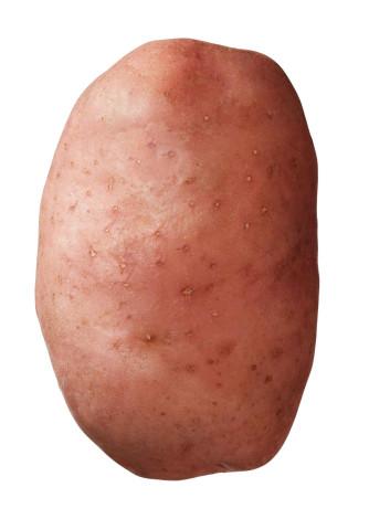 Saatkartoffel 'Désirée' 1 kg