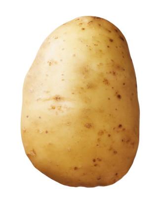 Saatkartoffel 'Lady Felicia' 2.5 kg