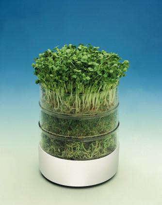 Keimapparat Bioset