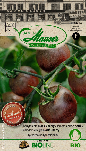 Bourgéon BIO Cherrytomate Cerise noire