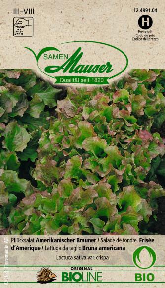 Knospe Bio Pflücksalat Amerikanischer Brauner