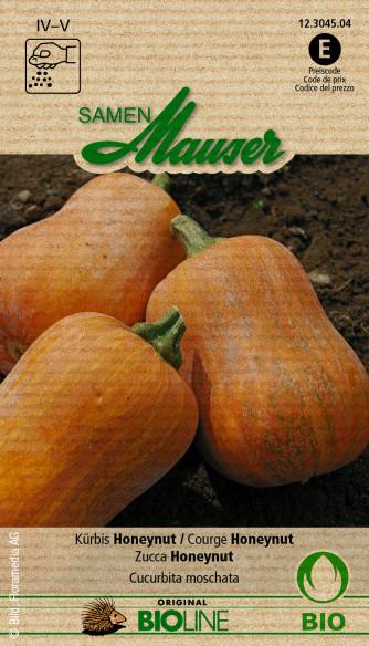 Knospe Bio Kürbis Honeynut
