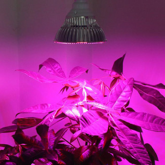 LED Pflanzenlampe Super Grow