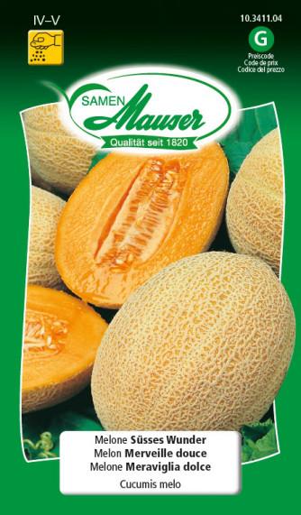 Melone Süsses Wunder