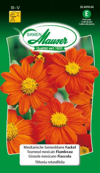 Mexikanische Sonnenblume Fackel