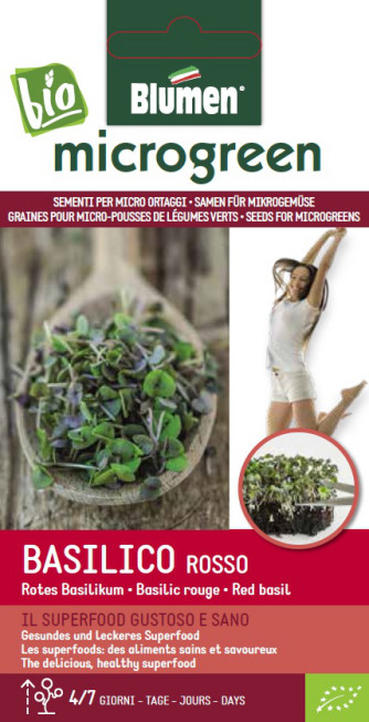 BIO Microgreen Basilikum rot 10g