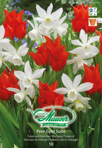 Peer Gynt Suite - Mischung Tulpen und Narzissen
