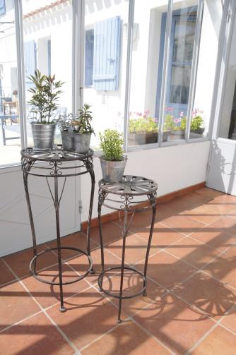 gartenzubeh r pflanzenst nder samen mauser. Black Bedroom Furniture Sets. Home Design Ideas