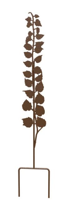 Soutien aux plantes lierre