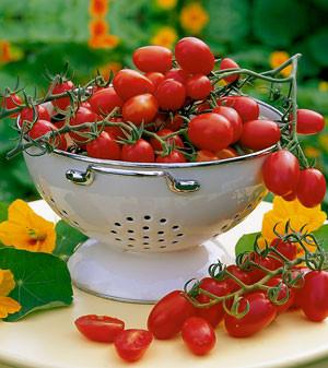 Pflaumen- oder Dattel-Cherrytomate 'Mirado Red'