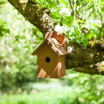 Premier Nest Box