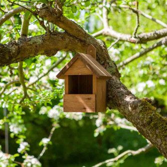 Premier Robin Nest Box