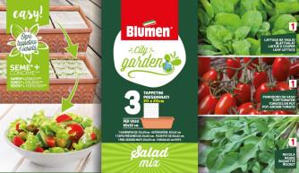 Salat Mix 3 St. 20x20cm