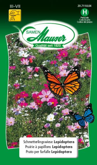 Schmetterlingswiese Lepidoptera