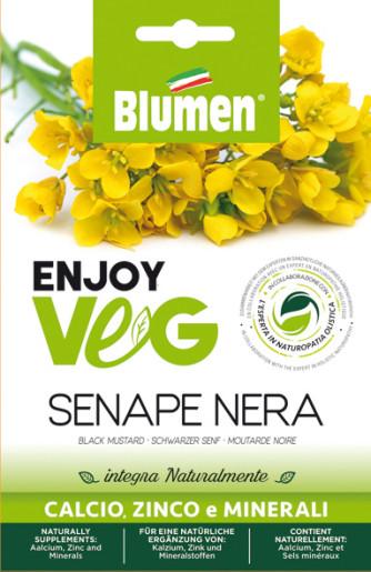 Schwarzer Senf (Brassica)