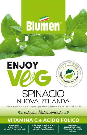 Neuseeländer Spinat (Tetragonia)