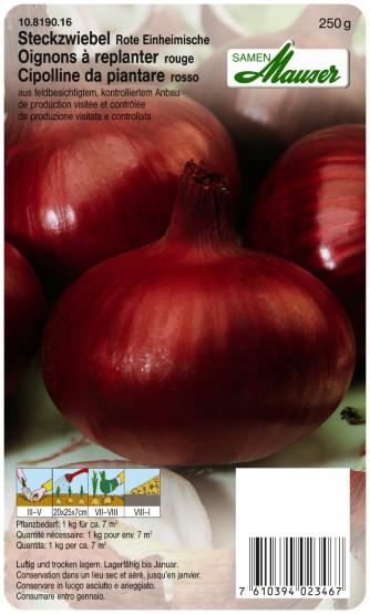 Steckzwiebel Rote Einheimische