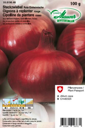 Steckzwiebeln Rote Einheimische