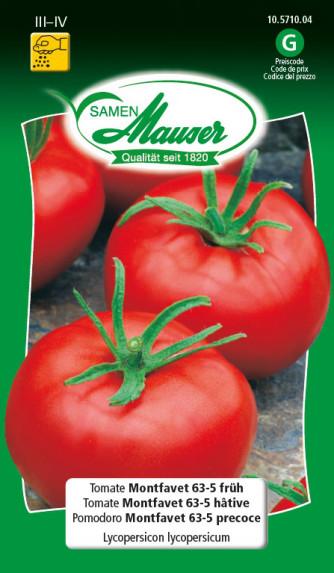 Tomaten Montfavet 63-5 früh