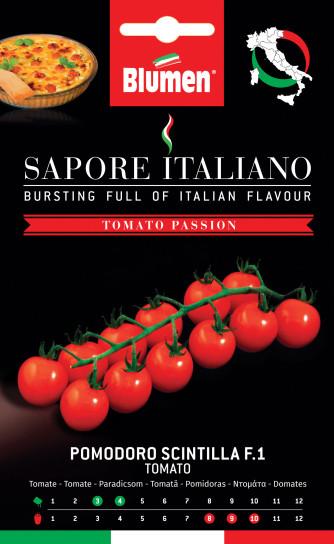Tomate Scintilla F1