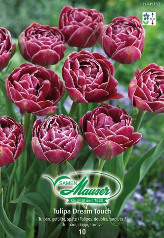 Dream Touch, Tulipe double, tardive, 10 bulbes