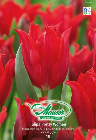 Pretty Woman, Lilienblütige Tulpe, 10 Zwiebeln