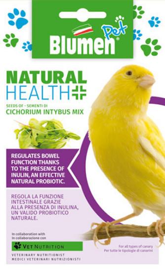 Zichorie (Cichorium intybus Mix)