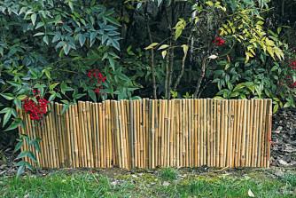Zierkante, Bambus